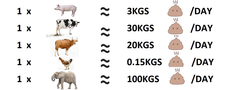 Animal-manure